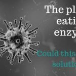 The plastic eating enzyme